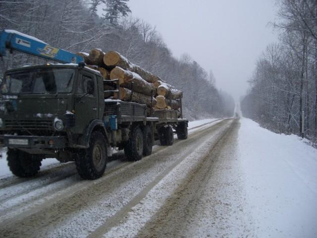 Russian timber heading south towards China