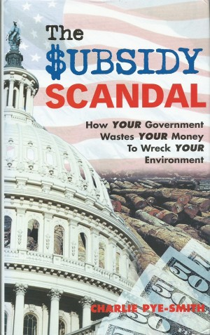 Sunsidey Scandal cover