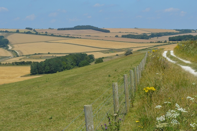 Perfect partridge country: a patchwork of different crops with plenty of hedgerows and conservation headlands