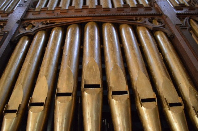 You can see how bat urine has streaked the organ pipes