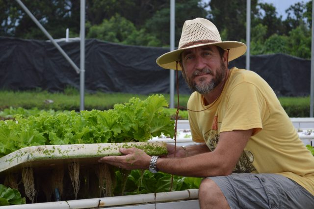 Richard Archer's aquaponic business produces 16,000 heads of high-quality, organic lettuce each week for the high-end restaurant market in Barbados.